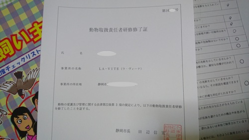 DSC_0159.JPG